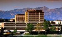 美国留学:加州洛杉矶分校专业设置